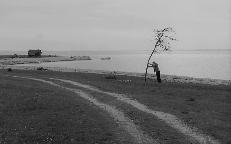 Escena de Sacrificio, de Andréi Tarkovski.